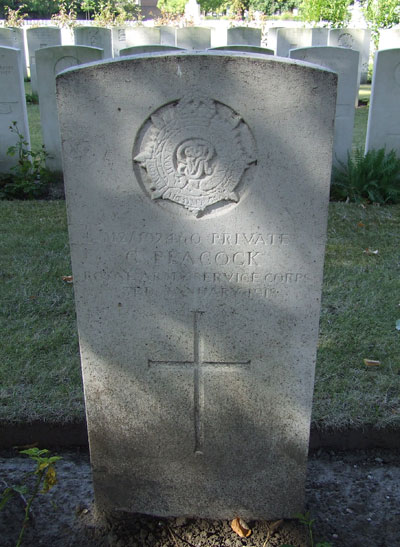 Grave of Peacock